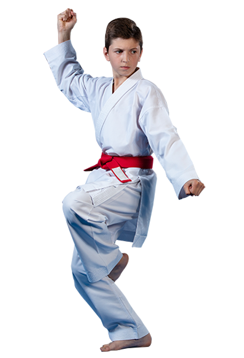 teen boy in a martial arts stance